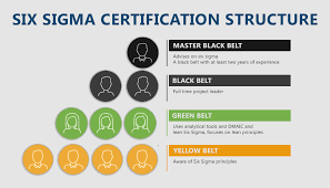 The Six Sigma certification hierarchy